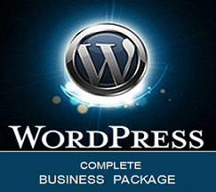 Custom WordPress Business Package