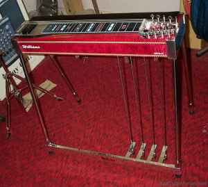 Pedal Steel Guitar Lessons (Walton, NY )